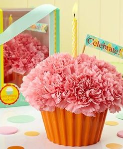 Cupcake In Bloom